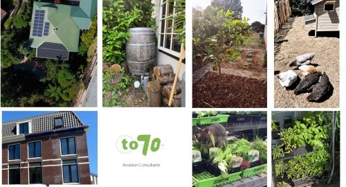 Sustainability initiatives by To70 employees